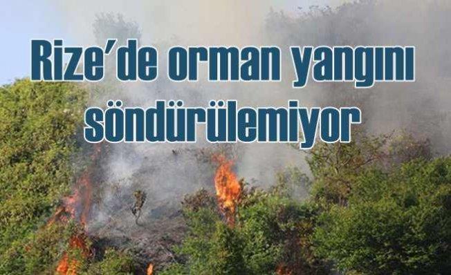 Rize'de orman yangını bir türlü söndürülemiyor