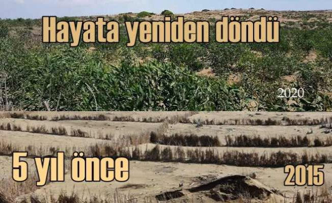 Ağyatan Lagünü çöl olmayacak
