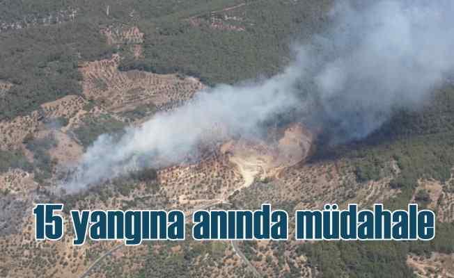 10 şehirde 15 orman yangınına anında müdahale