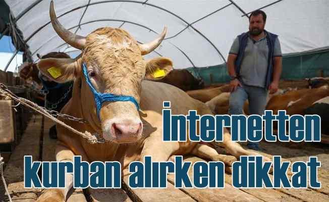 İnternetten kurban alırken dolandırılmayın