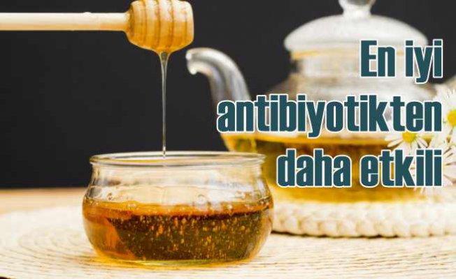 Bal antibiyotikten daha etkili   Oxford Üniversitesi açıkladı