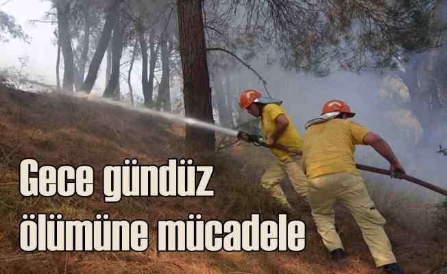 Ormanlar alev alev yanıyor | Bir günde 15 yangın birden çıktı
