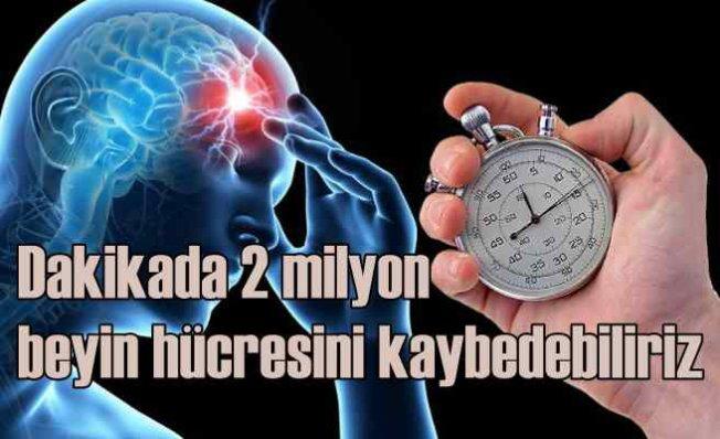 Dakikada 2 Milyon, Saatte 120 Milyon Beyin Hücresini Kaybedebiliriz