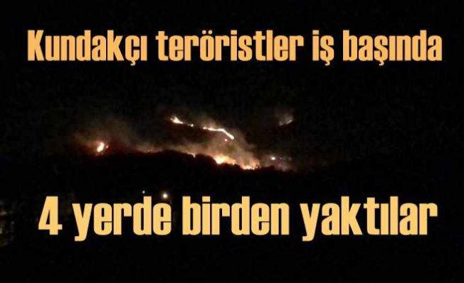 Hatay'da 4 ayrı yerde orman yangını