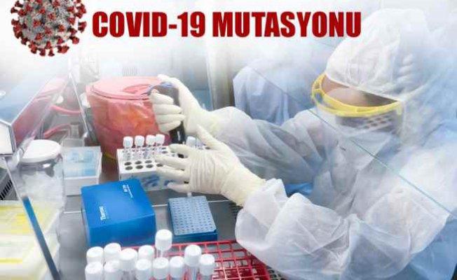 KKTC'de mutasyonlu virüs saptandı