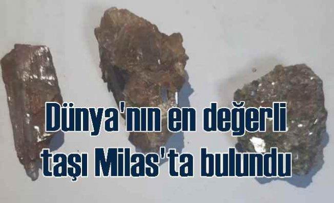 Painite taşı | Dünya'nın en değerlisi Milas'ta bulundu