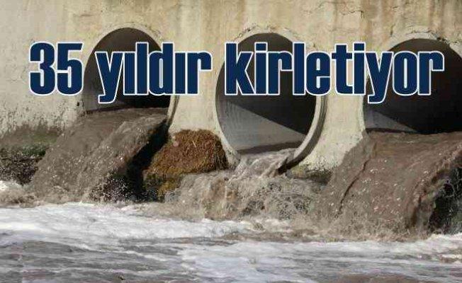 Ergene Nehri yıllardır zehir akıyor