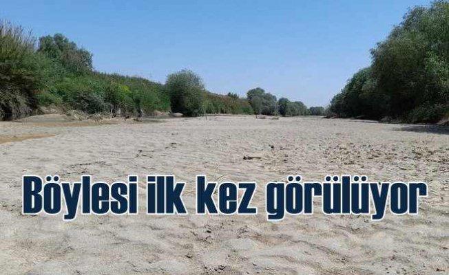 Büyük Menderes Nehri'nde korkutan kuraklık