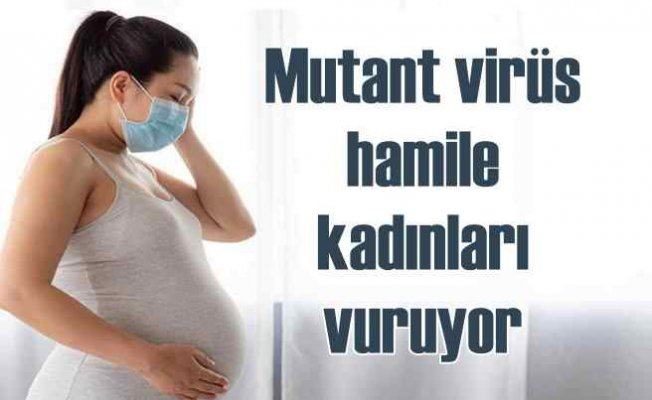 Mutasyona uğramış virüs hamile kadınları vuruyor