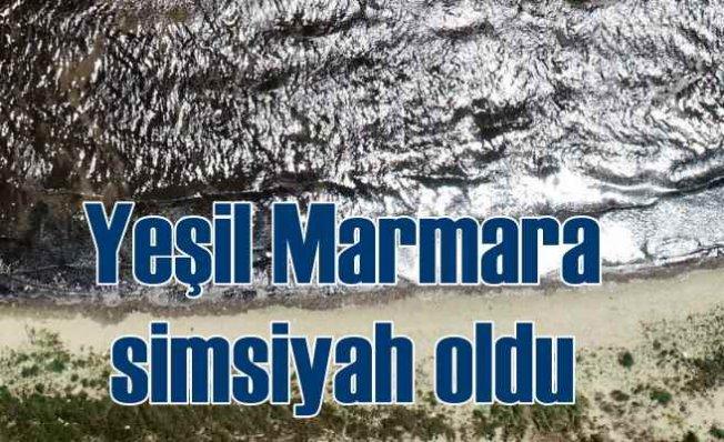 Yeşil Marmara siyaha döndü | Denize girmek intihar
