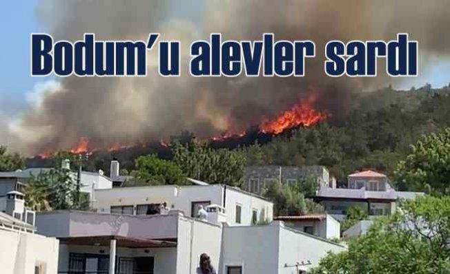Bodrum'da yangın | Alevler hızla yayılıyor