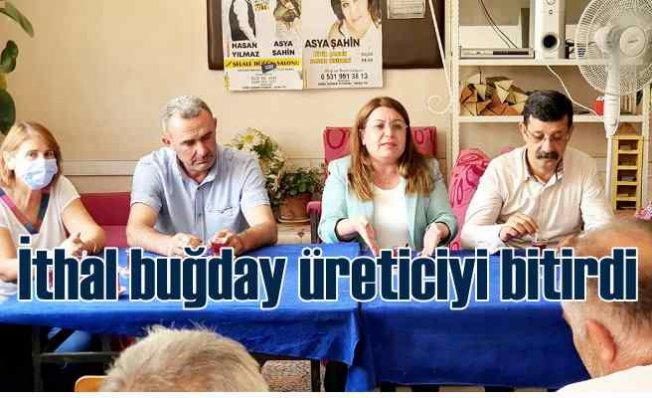 Gülizar Biçer Karaca| Buğday ithalatıyla üreticiyi bitirdiler
