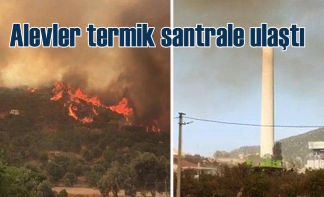 Milas'ta orman yangını   Termik Santral yanıyor