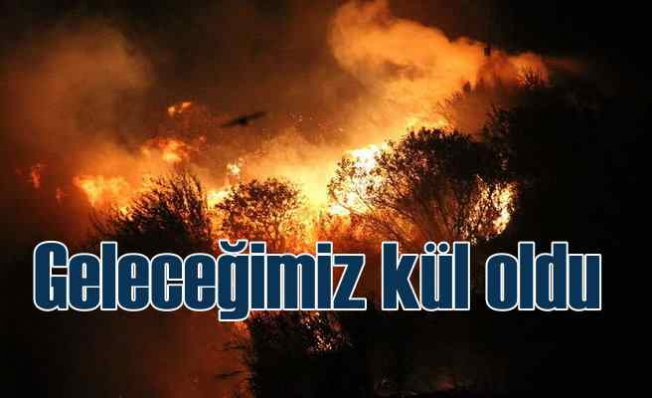 Orman yangınlarında 8'nci gün   Köylerde can pazarı yaşanıyor