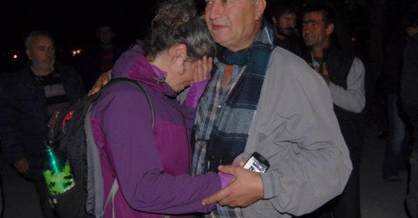 6 Bin Zeytin Ağacı Kesildi, Danıştay'dan 'Durdurma' Kararı Çıktı