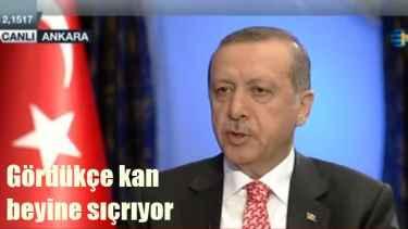 Erdoğan, Görüntüleri gördükçe kan beynine sıçrıyor