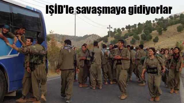 PKK, kiralık otobüsle IŞİD'e karşı savaşmaya gidiyor