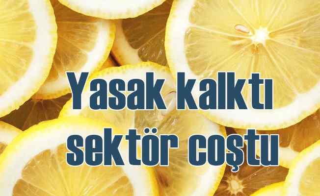 Limondaki ihracat kısıtlaması kaldırıldı | EİB hedef büyüttü