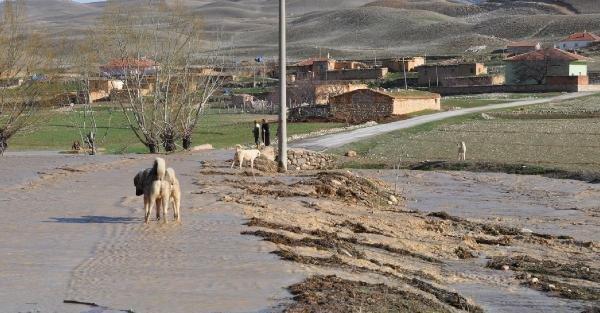 Ayrancı'da sel ekili arazilere zarar verdi