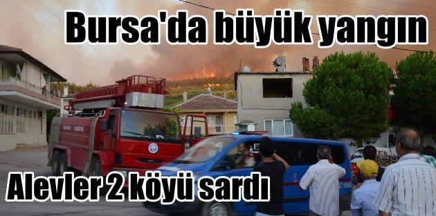 Bursada orman yangını: 2 köy büyük tehdit altında