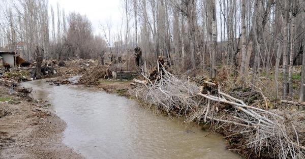 Dere ıslah çalışmasında 500 ağacın zarar gördüğü iddiası