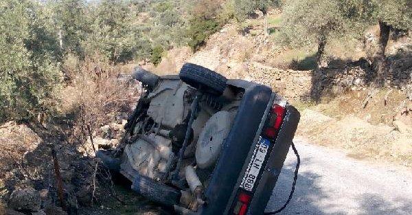Ehliyetsiz Sürücünün Kullandığı Otomobil İneğe Çarpip Devrildi: 1 Yaralı