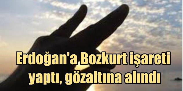 Erdoğana Bozkurt işareti yapan kadın gözaltına alında
