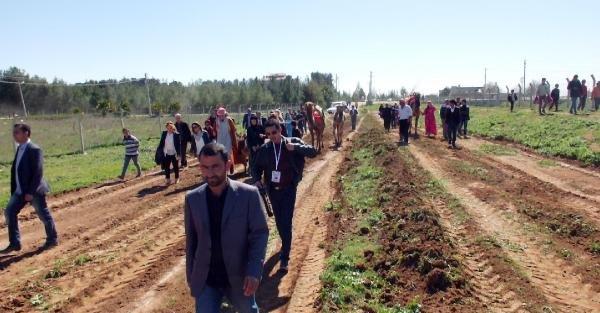 Harran'da Özgecan Aslan anısına hatıra ormanı