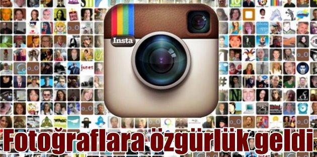 Instagram'da dik fotoğraflara...