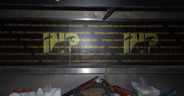 İstanbul'da Bonzai Operasyonu, 4 Kişi Gözaltında
