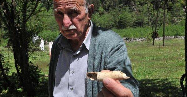 Kaçkarlar'da 2 milyon yıllık Mamut dişi heyecanı