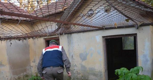 Kaybolan 85 Yaşındaki Adamı Afad Ve Jandarma Arıyor