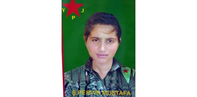 Kobani'de Yaralanan Pyj Militanı Adana'da Öldü
