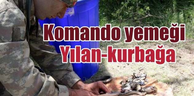 Komandoların yemeği: Yemek listesinde yılan, kurbağa var