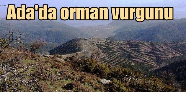 Marmara Adasını önce madenciler kemirdi, şimdi yağmalıyorlar