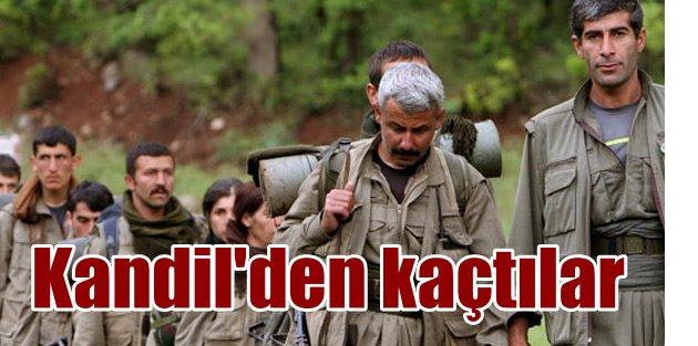 PKK liderleri için Kandil bitti, Kobani'ye kaçıyorlar