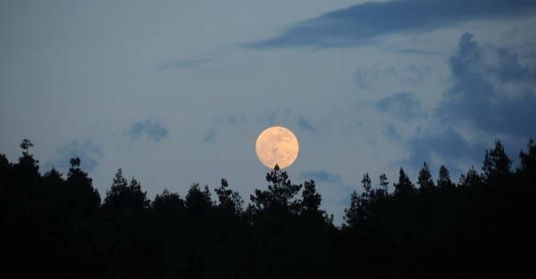 'Süper Ay'da 'kanlı' tutulma
