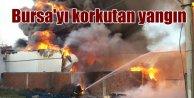Bursa'yı korkutan yangın; Soğuk hava deposu alevlere teslim oldu