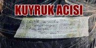 PKK#039;lı katiller bombanın üstüne not bıraktı