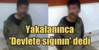 PKK'lı terörist böyle yalvardı; Devlete güvenin, devletten kopmayın