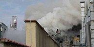 Pendik#039;te yangın; Sunni çim üreten fabrikada yangın çıktı
