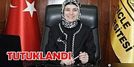 Tutuklanan Prof. Dr. Ayşegül Jale Saraç kimdir?