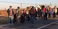24 öğrenci ölümden döndü: Öğrenci servisi kamyonla çarpıştı