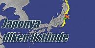 Japonya#039;da tsunami alarmı, nükleer santraller kapatıldı