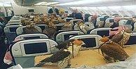 Şahinlerini uçakla seyehat ettiriyor