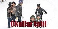 Rize, Trabzon, Giresun, Sivas ve Ordu'da okullar tatil