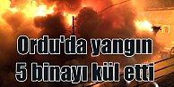 Ordu#039;da yangın; 5 bina alevlere teslim oldu