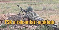 TSK açıkladı; 1 haftada 112 terörist öldürüldü