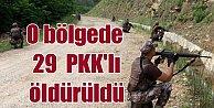 Bestler Dereler'de operasyon; 29 terörist öldürüldü