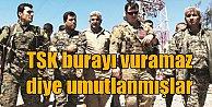 PKK'lı katillere 'Dost koruması' sağlanmış: O gece inlerinde vuruldular